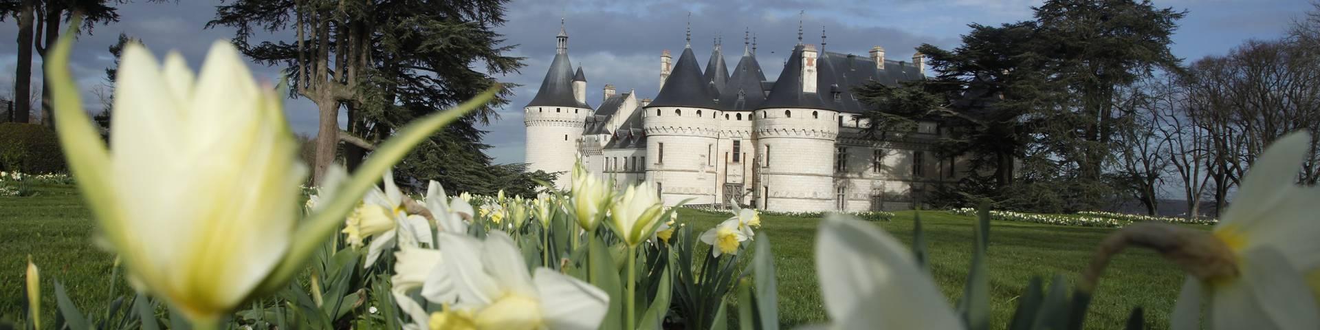 Festival Internacional de Jardines en Chaumont-sur-Loire. © E. Sander