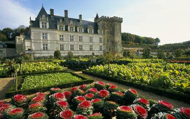 Castillo y jardines de Villandry. © Catherine Bibollet