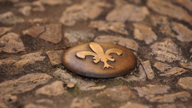 Pequeños Clavos de Blois. © OTBC