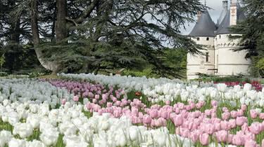 Jardines de Chaumont-sur-Loire