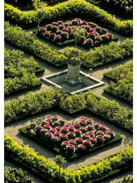 El Jardín de Villandry © Catherine Bibollet