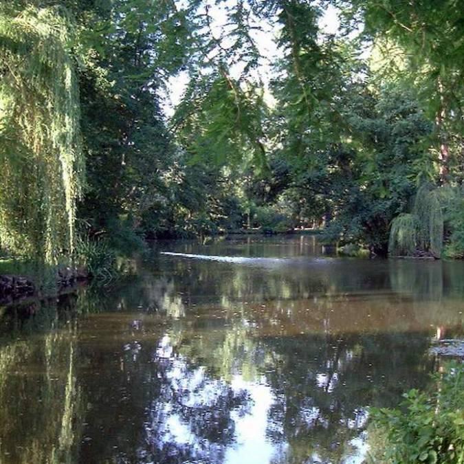 Río del territorio Blois-Chambord: Le Beuvron