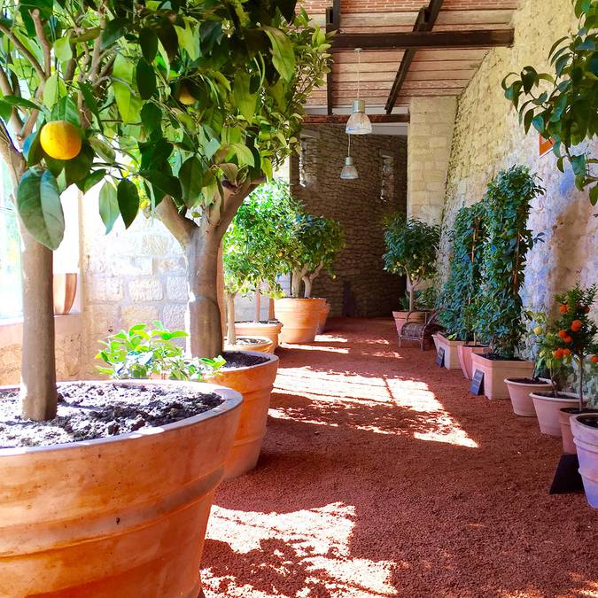 Los jardines del Château Gaillard. © OTBC